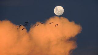 理想の男性と出会いを叶える満月の強力なおまじない