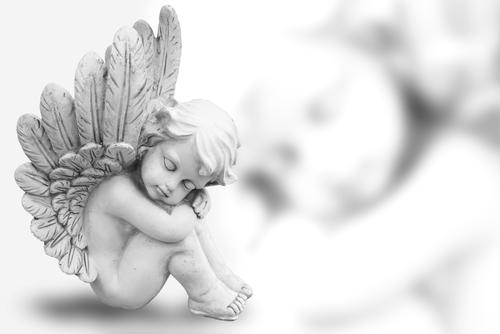 プロポーズされる待ち受け画像の天使