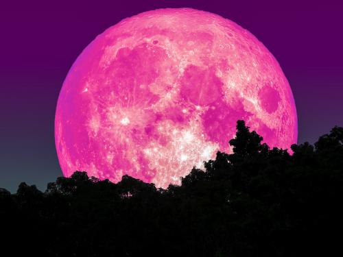 開運のためのピンクの月の待ち受け画像