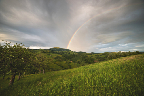 開運のための虹の待ち受け画像