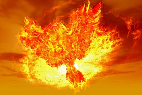 開運のための金の鳳凰の待ち受け画像