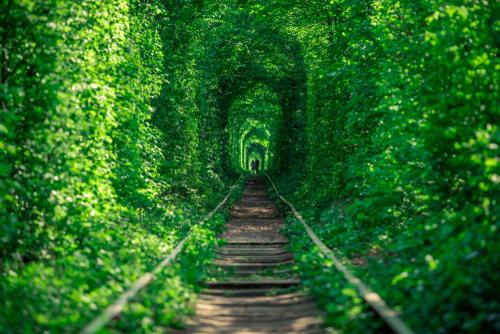 恋を叶える恋のトンネルの画像