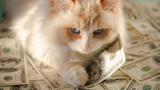 宝くじで高額当選する金運体質を手に入れる究極の方法